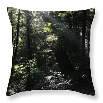 Secret Path Throw Pillow