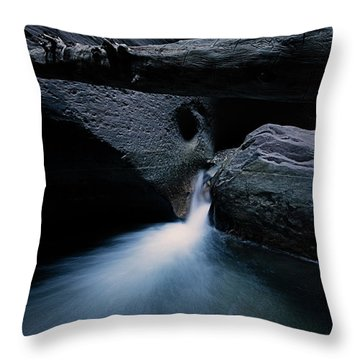 Secret Stream Throw Pillow