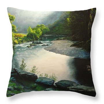 Secret Valley Throw Pillow by Harry Robertson