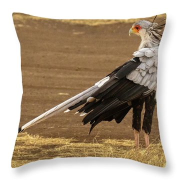 Secretary Bird Tanzania Throw Pillow