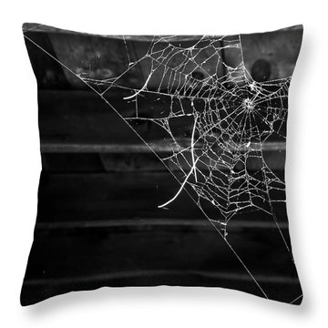 Secrets In The Dark Throw Pillow