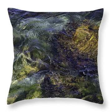 Secrets Of The Sea Throw Pillow by John Hoey
