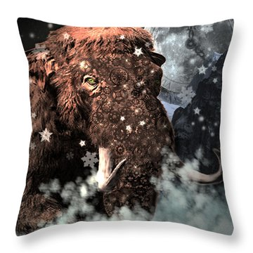 Secrets Of Time Throw Pillow