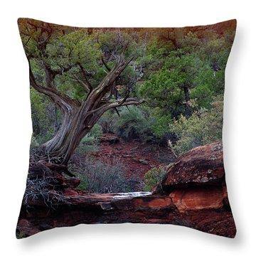 Sedona #1 Throw Pillow