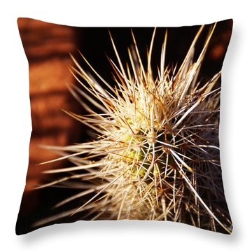 Sedona Throw Pillow by Linda Shafer