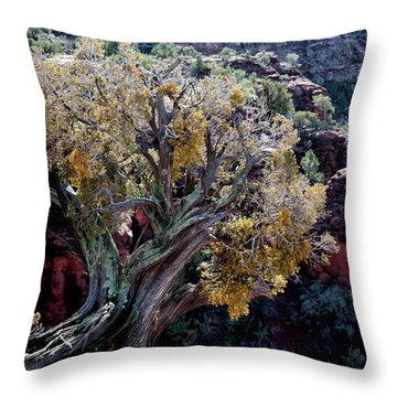 Sedona Tree #2 Throw Pillow