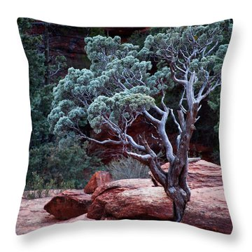 Sedona Tree #3 Throw Pillow