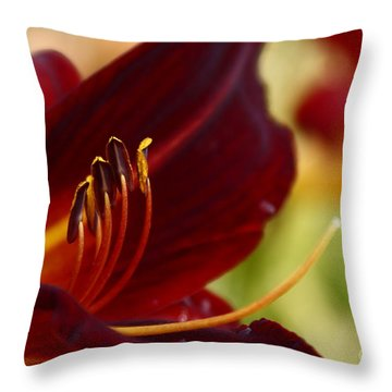 Seduction After The Rain Throw Pillow by Joanne Smoley