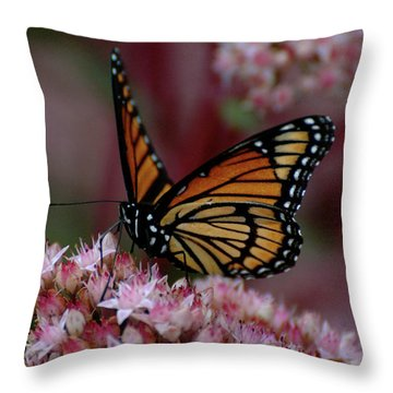 Sedum Butterfly Throw Pillow