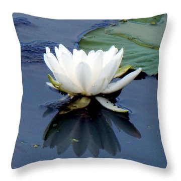 See Below The Surface Throw Pillow