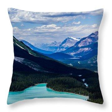 See Far Throw Pillow