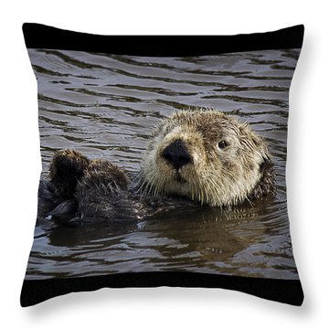 See Otter Posing Throw Pillow