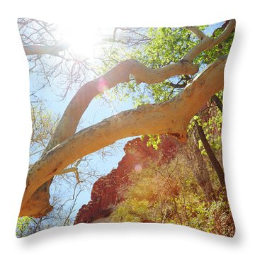 See The Light Throw Pillow by Kate Livingston