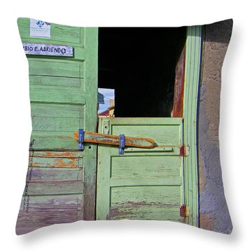 See-through Doors Throw Pillow by Lenore Senior