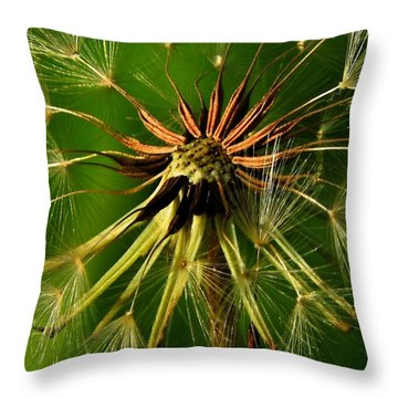 Throw Pillow featuring the photograph Seed Air Port by Laura Ragland