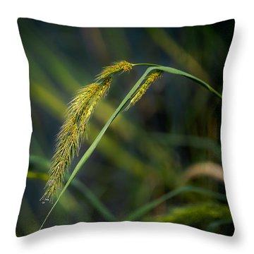 Seeds Throw Pillow by Allen Biedrzycki