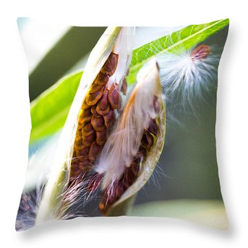 Seeds Throw Pillow