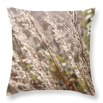 Seeds Of Autumn Throw Pillow by Tim Good