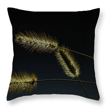 Seeds Of Life Throw Pillow by Christopher L Thomley