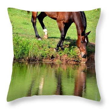 Seeing My Own Reflection Throw Pillow