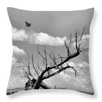 Seeker Throw Pillow