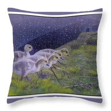 Seeking Shelter From The Storm Digital Artwork By Mary Lou Chmur Throw Pillow