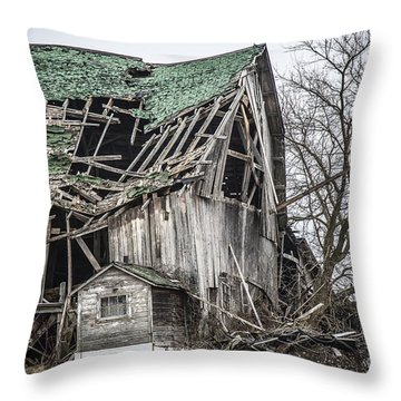 Seen Better Days Throw Pillow