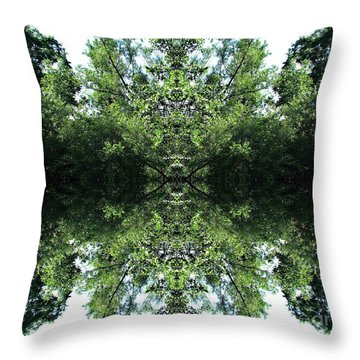 Sees All Throw Pillow