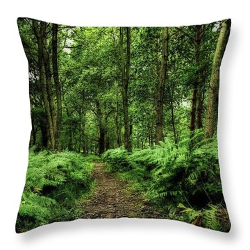 Seeswood, Nuneaton Throw Pillow by John Edwards