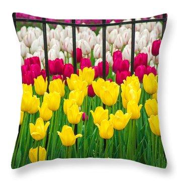 Segregated Spring Throw Pillow