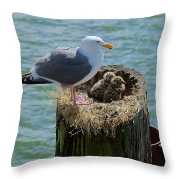 Seagull Family Throw Pillow