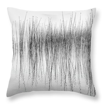 Seismograph Throw Pillow