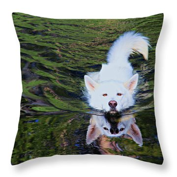 Throw Pillow featuring the photograph Sekani Swimming by Sean Sarsfield