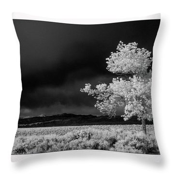 Selective Throw Pillow