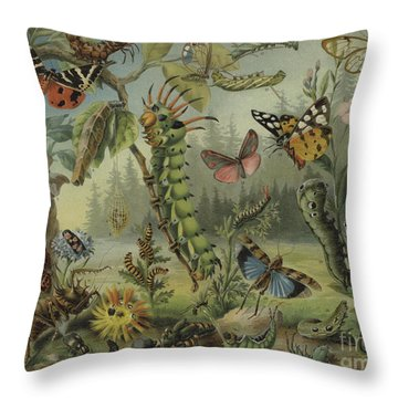 Self Defense Mechanisms In Insects Throw Pillow