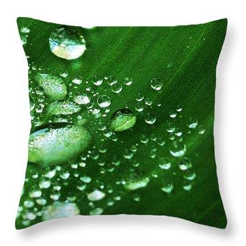 Growing Carefully Throw Pillow by John Glass