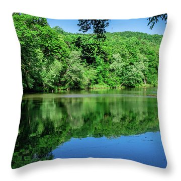 Semi Placid Stream Throw Pillow