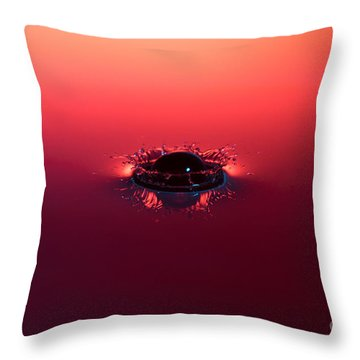 Semi Submerged Droplet Throw Pillow