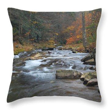 Seneca Creek Autumn Throw Pillow