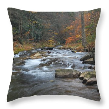 Seneca Creek Autumn Throw Pillow