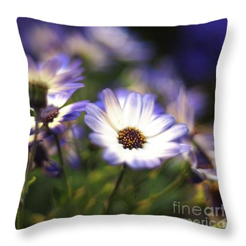 Senetti Dreams Throw Pillow by Dorothy Lee