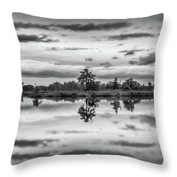 Seney Throw Pillow