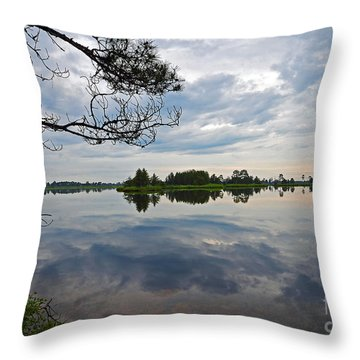 Throw Pillow featuring the photograph Seney National Wildlife Refuge by Rodney Campbell