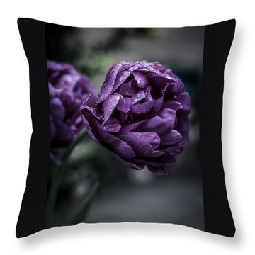 Sensational Dreams Throw Pillow by Miguel Winterpacht