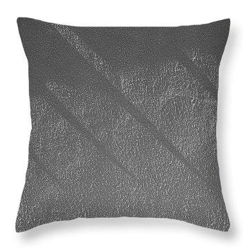Sensibilities 2009 1 Of 1  Throw Pillow