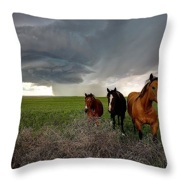 Sensing The Storm #3 Throw Pillow