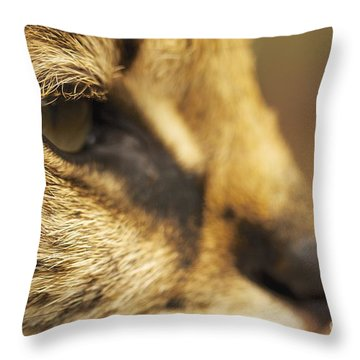 Throw Pillow featuring the photograph Sensus by Gary Bridger