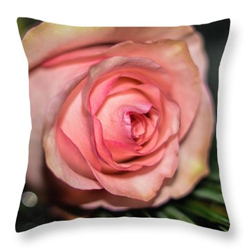 Throw Pillow featuring the photograph Sentimentality by Diana Mary Sharpton