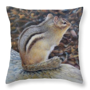 Sentinel Throw Pillow by Pamela Clements