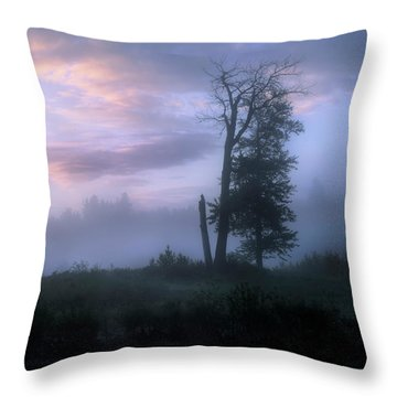 Sentinels In The Valley Throw Pillow by Dan Jurak